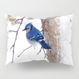 Blue Jay in winter 2 Pillow Sham