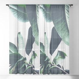 Ficus Elastica #26 #foliage #decor #art #society6 Sheer Curtain