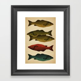 One fish Two fish... Framed Art Print