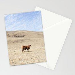 San Luis Obispo Cow Stationery Cards