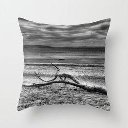 Driftwood 4 mono Throw Pillow