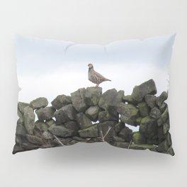 Partridge on a Wall Pillow Sham