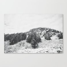 MONTANA BEAUTY in the BLACK & WHITE Canvas Print