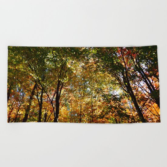Through the Trees in October Beach Towel