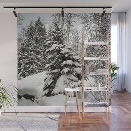 Carol M Highsmith - Snowy Pine Trees Wall Mural
