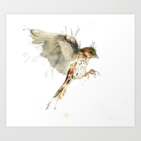 My Sparrow Art Print