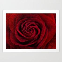 Romanza Art Print