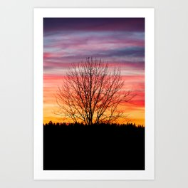 Tree silhouette and beautiful vibrant sunset clouds Art Print