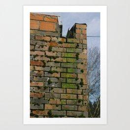 Mossy Bricks - Mount Vernon, WA Art Print