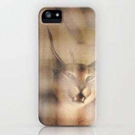 Caged Lynx-Montreal Zoo 1975 iPhone Case