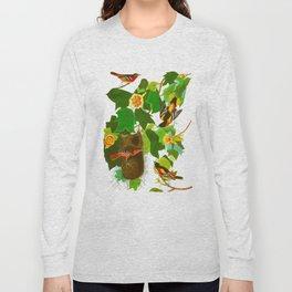 Baltimore Oriole Bird Long Sleeve T-shirt