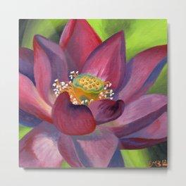 Lotus in Bloom Metal Print