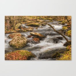 The Rush Canvas Print