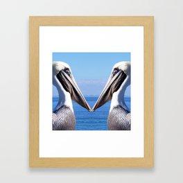 Pelican Pair Framed Art Print