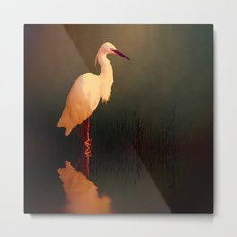 Midnight Egret Metal Print