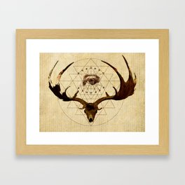Anteocularis III Framed Art Print