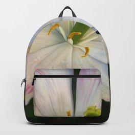 Jazz Berry Petals Backpack