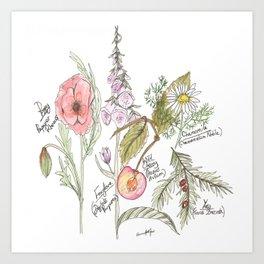 Natures Bounty Art Print