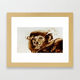Monkey looking at a human being Framed Art Print