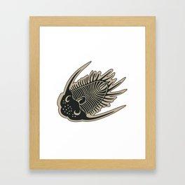 Trilobite Fossils Framed Art Print