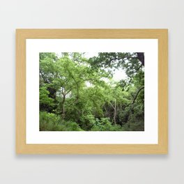 Green green Forest Framed Art Print