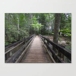 Crossing the Creek Canvas Print