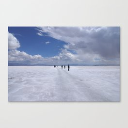 Desert of salt Argentina Canvas Print