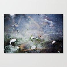 frozen lakes Canvas Print