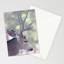 Watercolor Deer, Mule 07, RMNP, Colorado, The Bust Stationery Cards
