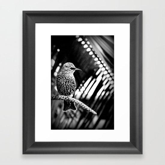 natural patterns Framed Art Print