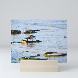 Trash Bird, #5 Mini Art Print