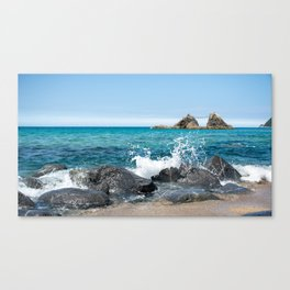 wedded rocks at Futamigaura beach Japan Canvas Print