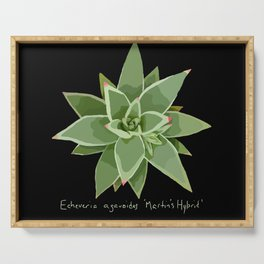 Succulent Species Echeveria agavoides 'Martin's Hybrid' Black Serving Tray