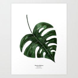 Botanical I - Watercolor Monstera Art Print