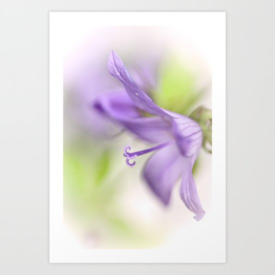 Dreamy flowers... Art Print