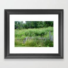 Fence Overgrown Framed Art Print