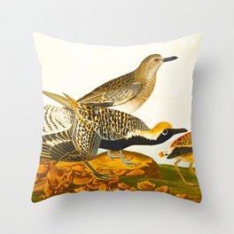 Black-bellied Plover Bird Throw Pillow