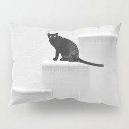 Black cat on steps Pillow Sham