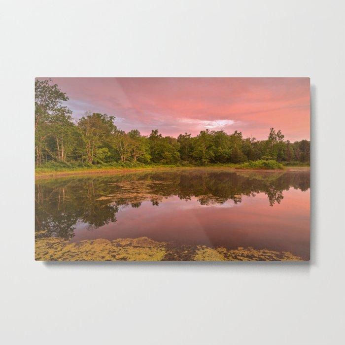 Pink Twilight Marsh Metal Print