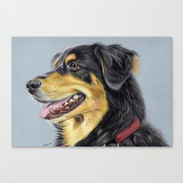 Dog Portrait 01 Canvas Print