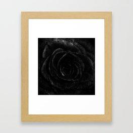 ROSE dark Framed Art Print