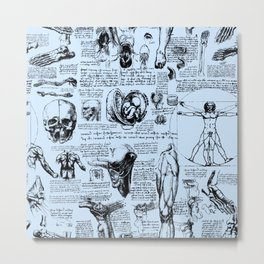 Da Vinci's Anatomy Sketchbook // Light Blue Metal Print