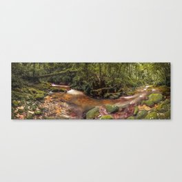 Forest Panorama Canvas Print