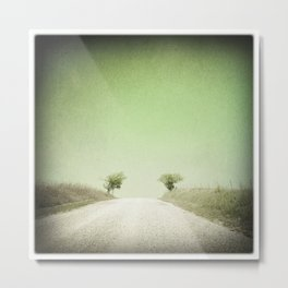 Twin Trees, Flint Hills, Kansas Metal Print