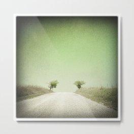 Twin Trees, Flint Hills, Kansas Metal Print