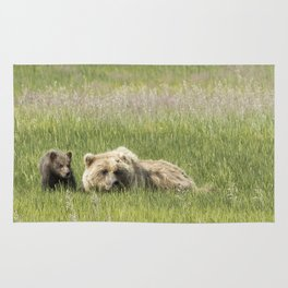 Young Brown Bear Cub and Its Mother, No. 1 Rug