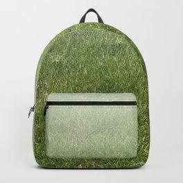 Light-to-Dark Green Ombre Gradient Grass Backpack