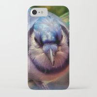 jay fleck iPhone & iPod Cases featuring Blue Jay by Christine Belanger