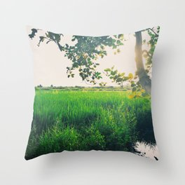 landscape tree foliage rice field sunlight Throw Pillow