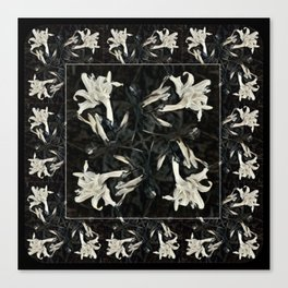 Black and White Lilies Canvas Print
